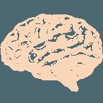 Utbildning inom Systematiskt arbetsmiljöarbete